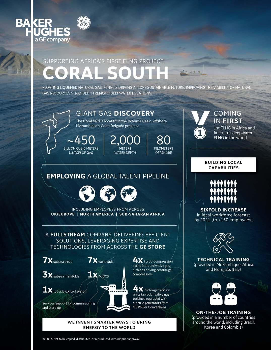 CS15870-01 Mozambique Infographic_R9